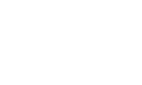 Insights Seekers